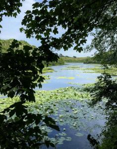 holidays in pembrokeshire bosherston